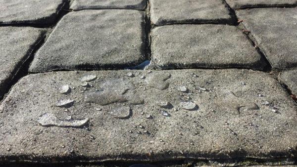 paver sealing sun city center